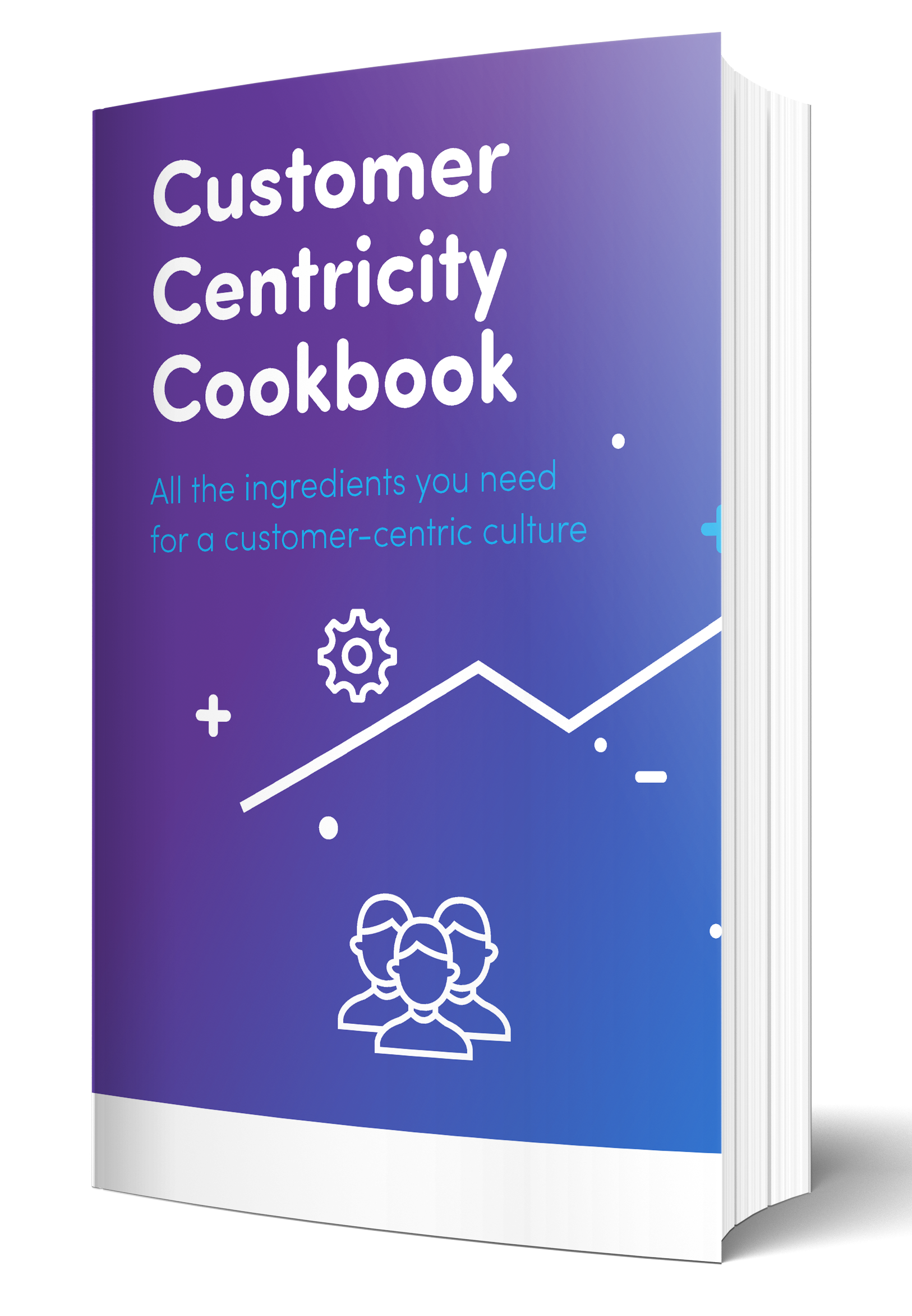 customer centricity cookbook mockup